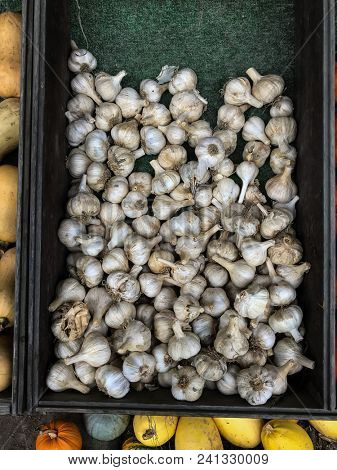Garlic inside box