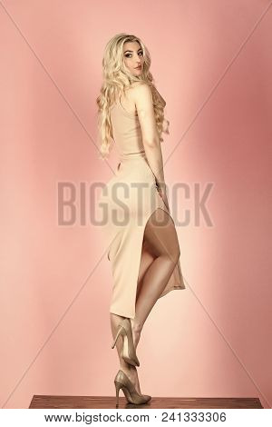 Sensual Woman Body. Look And Fashion Style. Girl In Sexy Fashionable Dress. Beauty And Fashion. Fash