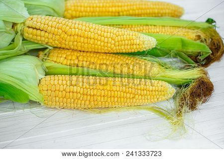 A Close-up Of Corn Produced In A Rustic Garden