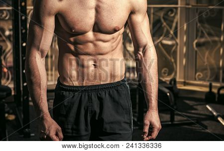 Male Torso, Muscular Mens Heals Body Care. Six Packs, Gym On Background, Close Up. Sportsman, Athlet