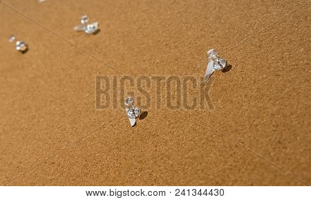 Cork Borad Or Notice Board With Clear Plastic Pins With A Piece Of Paper