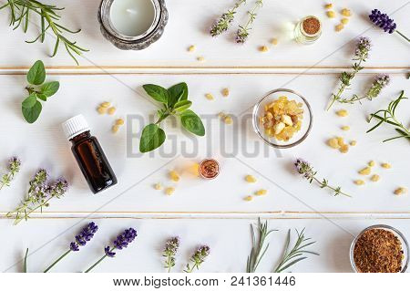 Bottles Of Essential Oil With Frankincense, Oregano, Lavender And Other Fresh Herbs On A White Backg