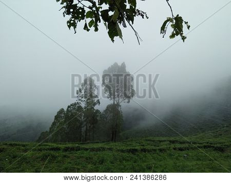 So Beautyfull Landscape Of East Java Indonesia