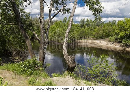 Beautiful Summer Landscape On The River Bank. Quiet River Flows Among The Wooded Riverbank Against T