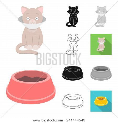 An Animal Cat Cartoon, Black, Flat, Monochrome, Outline Icons In Set Collection For Design. Caring F