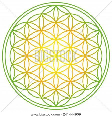 Flower Of Life With Spring Energy Colors. Geometrical Figure, Spiritual Symbol And Sacred Geometry.