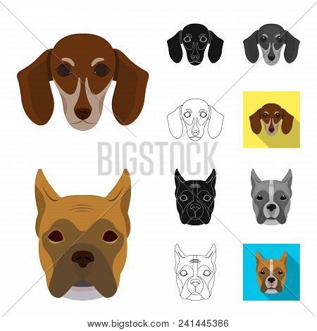 Dog Breeds Cartoon, Black, Flat, Monochrome, Outline Icons In Set Collection For Design.muzzle Of A