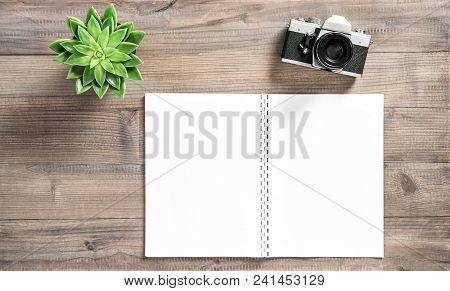 Open Book, Vintage Photo Camera, Succulent On Wooden Background. Office Desk Flat Lay