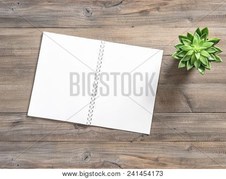 Open Book And Succulent Plant On Wooden Background. Flat Lay