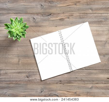 Office Desk Flat Lay. Open Book And Succulent Plant On Wooden Background