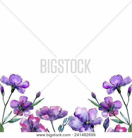 Violet Flax. Floral Botanical Flower. Frame Border Ornament Square. Aquarelle Wildflower For Backgro