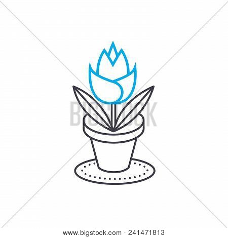 Growing Of House Flowers Line Icon, Vector Illustration. Growing Of House Flowers Linear Concept Sig