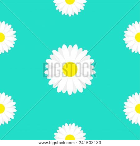 White Daisy Marguerite Chamomile Icon. Cute Flower Plant Collection. Growing Concept. Seamless Patte