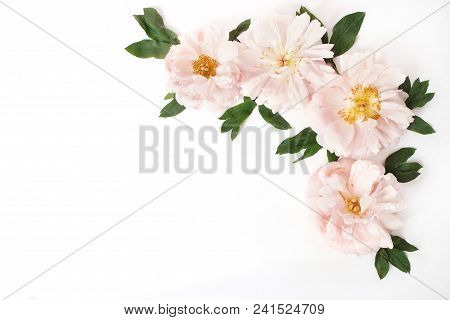 Feminine Styled Stock Photo With Pink Peony Flowers And Leaves Isolated On White Background. Flat La