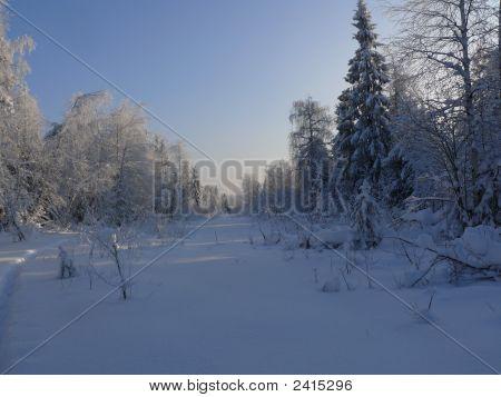 rural winter in russia
