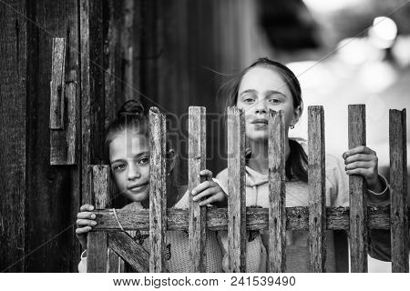 Two cute girls little sisters look out from behind a wooden fence in village.