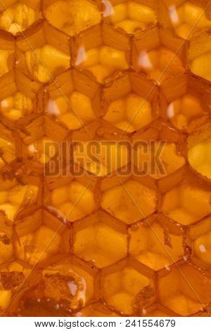 Backlit Honey Comb Texture Vertical Background Image