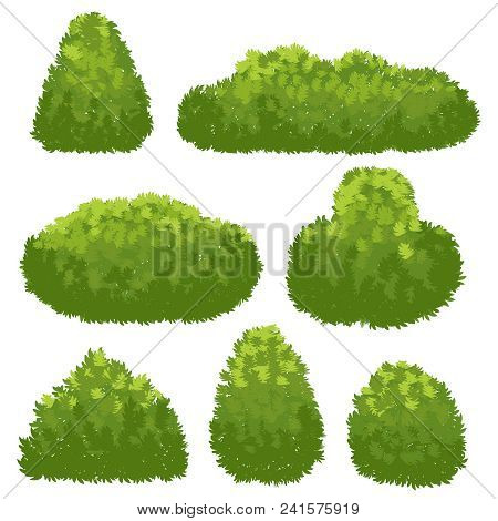 Nature Hedge, Garden Green Bushes. Cartoon Shrub And Bush Vector Set Isolated On White Background. L