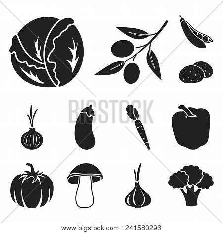 Different Kinds Of Vegetables Black Icons In Set Collection For Design. Vegetables And Vitamins Vect