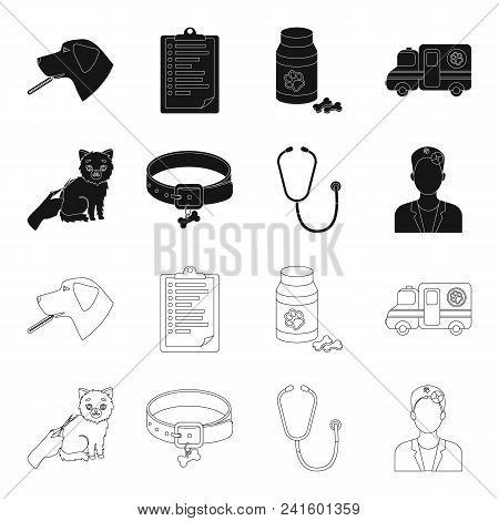 Collar, Bone, Cat, Haircut .vet Clinic Set Collection Icons In Black, Outline Style Vector Symbol St