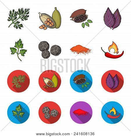 Ptrushka, Black Pepper, Paprika, Chili.herbs And Spices Set Collection Icons In Cartoon, Flat Style