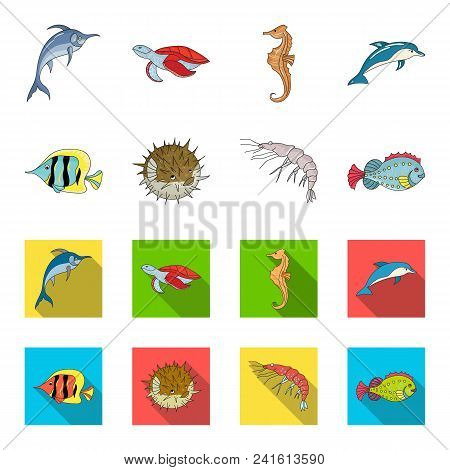 Shrimp, Fish, Hedgehog And Other Species.sea Animals Set Collection Icons In Cartoon, Flat Style Vec