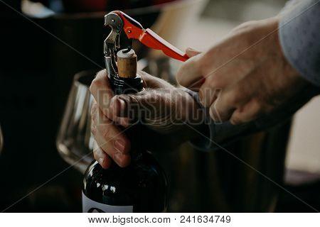 Sommelier Opening Wine Bottle In The Wine Cellar.
