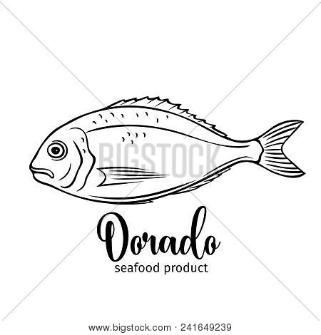 Vector Dorado Fish. Retro Hand Drawn Badge Bream Fish For Design Seafood Product, Menu And Market.