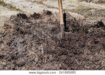 Cow dung, manure rotted compost organic fertilizer for agriculture poster