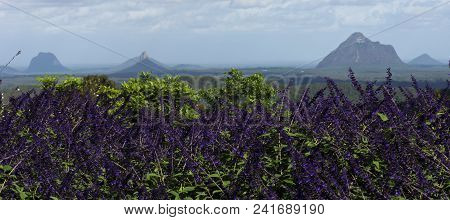 Mountain View Of The Glass House Mountains Hinterlands.