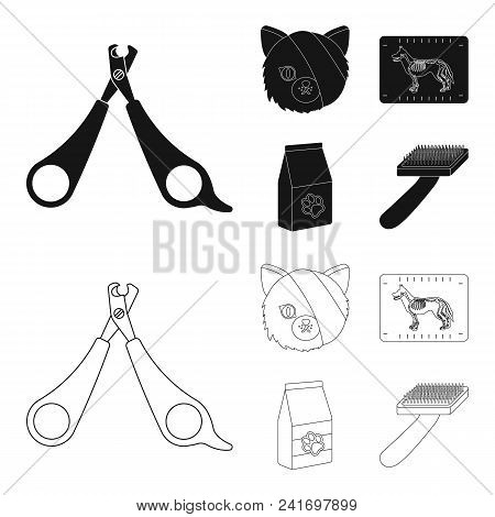 Scissors, Cat, Bandage, Wounded .vet Clinic Set Collection Icons In Black, Outline Style Vector Symb