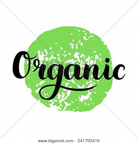 Organic Brush Lettering. Hand Drawn Word Organic With Green Circle. Label, Logo Template For Organic
