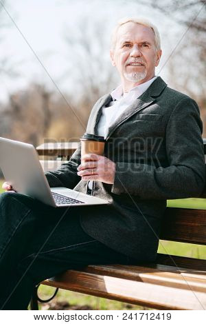 Meeting In Park. Low Angle Of Reflective Mature Businessman Using Laptop While Posing On Bench