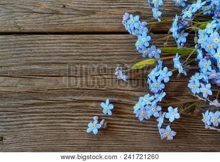 Forgetmenot Flowers On An Old Wooden Background Top View