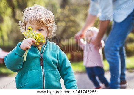 An Unrecognizable Father With His Two Toddler Children Outside On A Sunny Spring Walk.