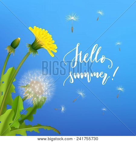 Dandelion Bush Flying Seeds Blue Background. Handdrawn Lettering Hallo Summer. Stylized Poster On Th