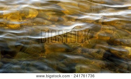Sunlit Shallow Golden Lake Waters.  Rocks Lying Below Surface.