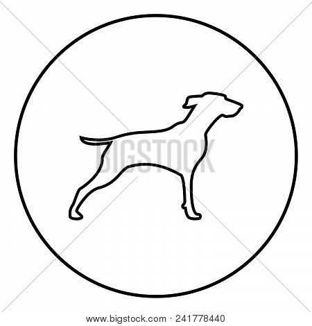 Hunter dog or gundog icon outline in circle black color vector illustration simple image flat style poster