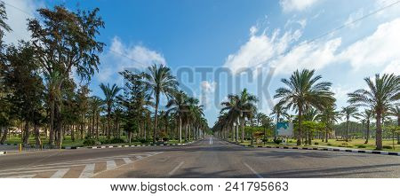 Panoramic View Of Asphalt Road Framed By Trees And Palm Trees With Partly Cloudy Sky In A Summer Day