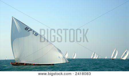 Arabian Sailing Dhows