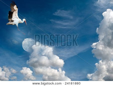 Stork flying to the moon