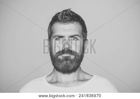 Man With Serious Emotion. Hipster With Serious Face. Guy Or Bearded Man On Grey Background. Barber F