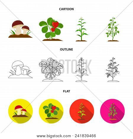 Mushrooms, Strawberries, Corn, Cucumber.plant Set Collection Icons In Cartoon, Outline, Flat Style V