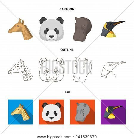 Panda, Giraffe, Hippopotamus, Penguin, Realistic Animals Set Collection Icons In Cartoon, Outline, F