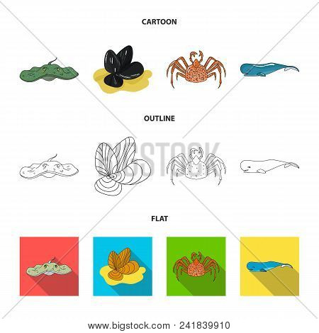 Electric Ramp, Mussels, Crab, Sperm Whale.sea Animals Set Collection Icons In Cartoon, Outline, Flat