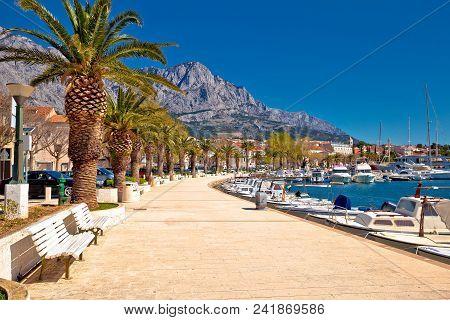 Baska Voda Palm Waterfront View, In Makarska Riviera, Dalmatia Region Of Croatia