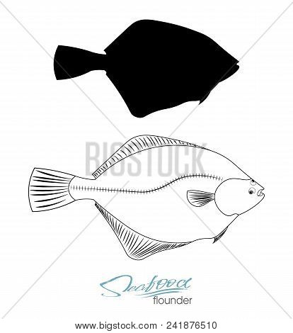 Flounder Fish Silhouette. Linear Silhouette Sea Fish. Vector Illustration. Icon Badge Flounder Fish