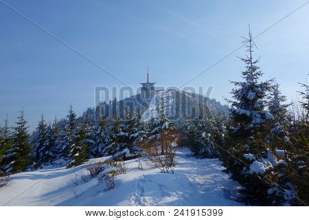 Winter Snowy View On The Highest Mountain Called Lysa Hora, Beskydy, Czech Republic