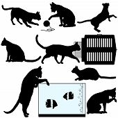 Cat symbol silhouettes a set of assorted cat poses and related objects: pet carrier; aquarium; yarn ball. poster