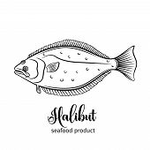 Vector halibut . Hand drawn icon badge flounder fish for design seafood packaging and market. poster
